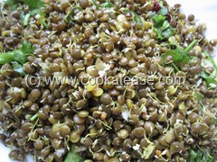 Sprouted_Masoor_Dal_Red_Lentils_Sundal_1