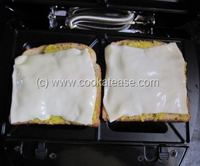 Toasted_Bread_Sandwich_Pumpkin_Spread_9