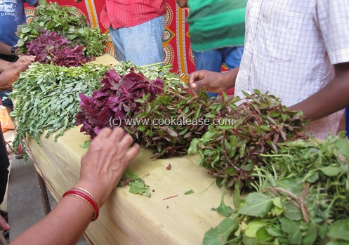 Chennai_Safe_Food_Mela_Pesticide_Free_8