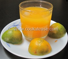 Fresh_Orange_Santra_Juice_1