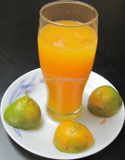 Fresh_Orange_Santra_Juice_6