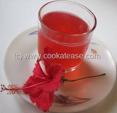 Red_Hibiscus_Juice_Chembaruthi_Sharbat_1