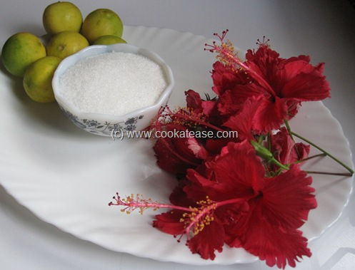 Red_Hibiscus_Juice_Chembaruthi_Sharbat_2