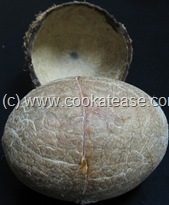 Extract_Coconut_Milk_Thengai_Paal_Nariyal_Doodh_Scrapper_4