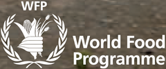 world_food_programme_wfp