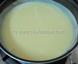 Colorful_Mixed_Fruit_Custard_6