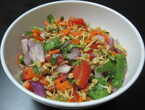 Sprouted_Fenugreek_Salad_4