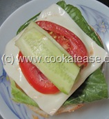 Indian_Vegetable_Burger_10