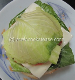 Indian_Vegetable_Burger_11