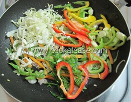 Vegetable_Hakka_Noodles_Chow_mein_15
