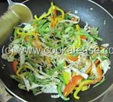 Vegetable_Hakka_Noodles_Chow_mein_17