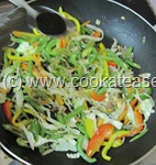 Vegetable_Hakka_Noodles_Chow_mein_18