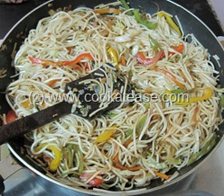 Vegetable_Hakka_Noodles_Chow_mein_21