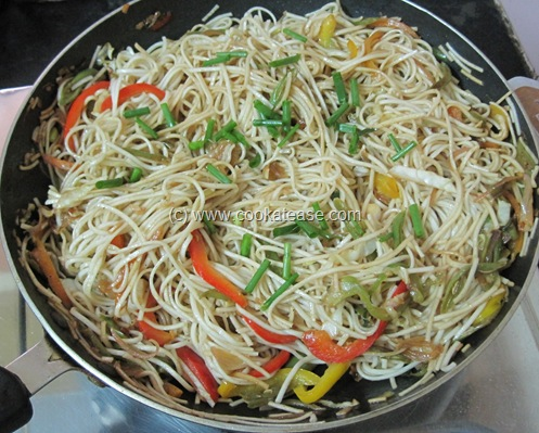 Vegetable_Hakka_Noodles_Chow_mein_22